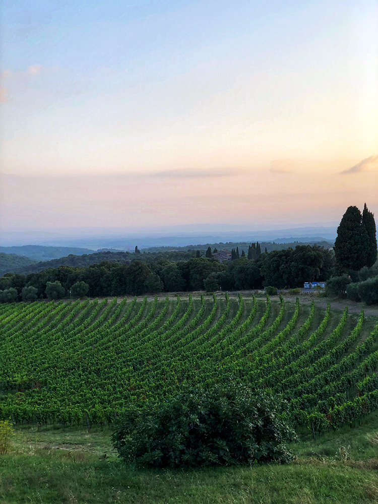 Tuscany at Sunset